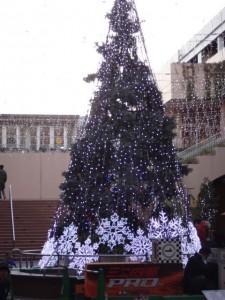 ミニ四駆ジュニアカップ・トレッサ横浜杯2013[秋]会場近くの噴水に設けられたクリスマスツリー