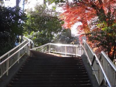 東京南青山の風景